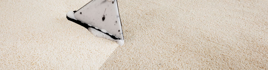 Plymouth based carpet cleaning services